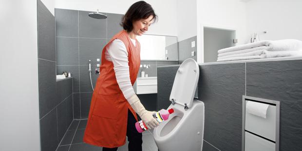 Čiščenje sanitarij in stranišč